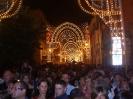 Festa in onore di S.Francesco 2011-13