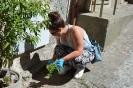 Giornata Ecologica Fuscaldo Centro Storico 10 Giugno 2017-17